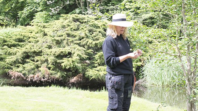 Sandra Ehrsköld i Norrvikens trädgård. Foto: Joakim Ormsmarck