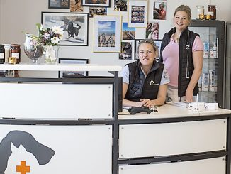 Veterinären Åsa Tomaszewski och djursjukskötaren Monica Wejlin Foto: Anna Matre, Bjäreliv